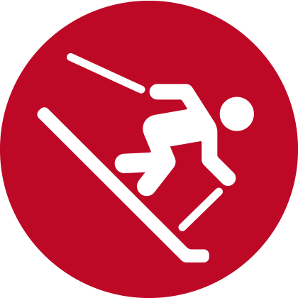 icon Wintersport